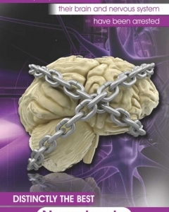 Nerver-Front.jpg-nggid03186-ngg0dyn-240x300x100-00f0w010c011r110f110r010t010